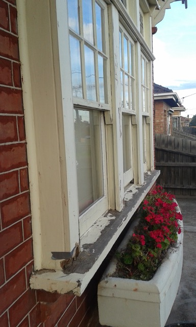 timber window rot repairs melbourne